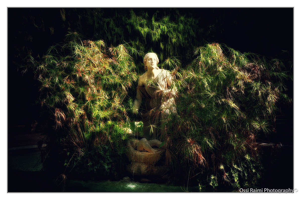 The Statue in the bush, Rome 2009