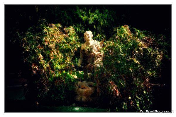 The Statue in the bush, Rome 2009