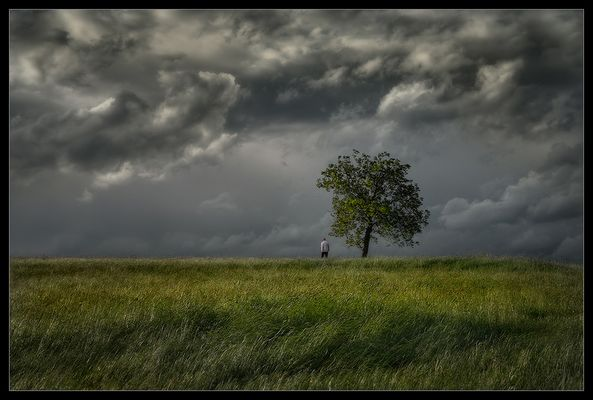 « the stormwatcher »