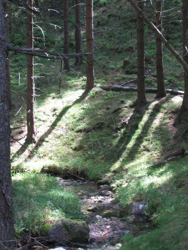the streamlet
