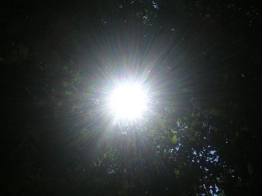 The sun is shining...