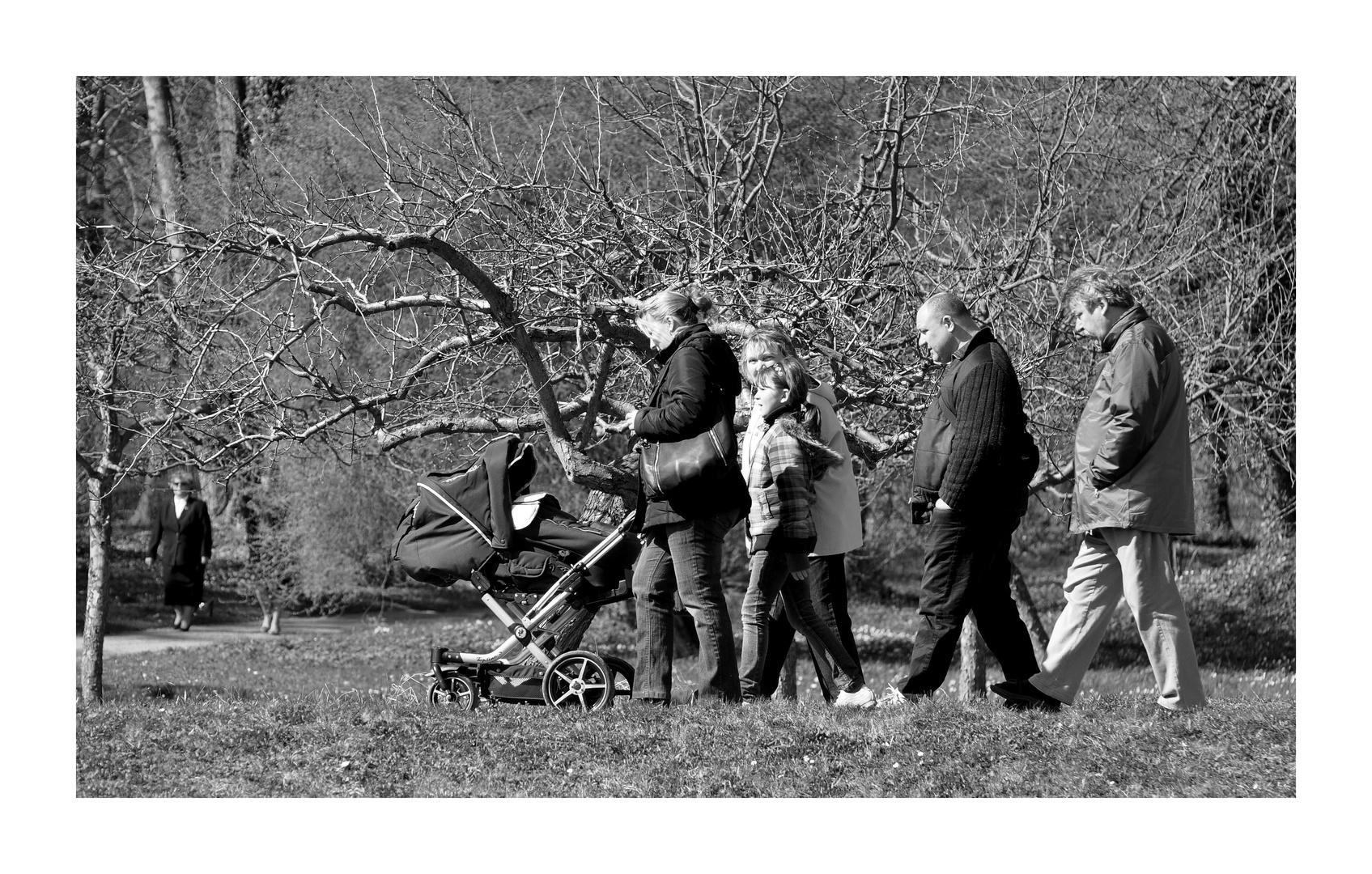The Sunday-Afternoon-BigFamily-Generation-Walk