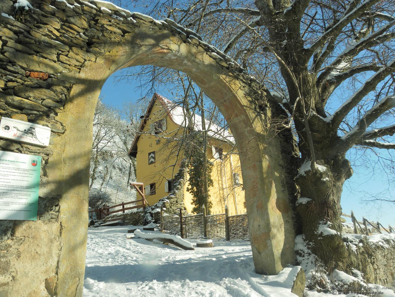 The sunny side of life.... am 2.Weihnachtstag 2010 auf dem Hohenkrähen...das Domizil ....