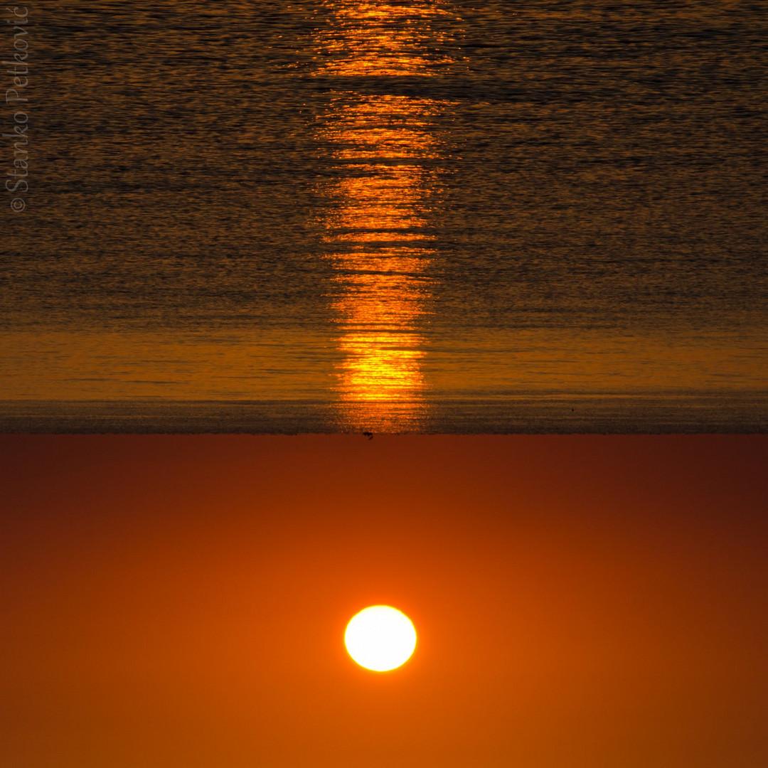 The Sun's ultimatum !