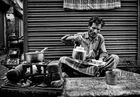 the tea cook