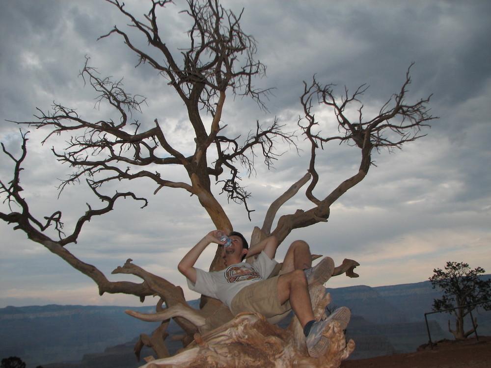 The thirst - la sete (Grand Canyon - Arizona - USA)