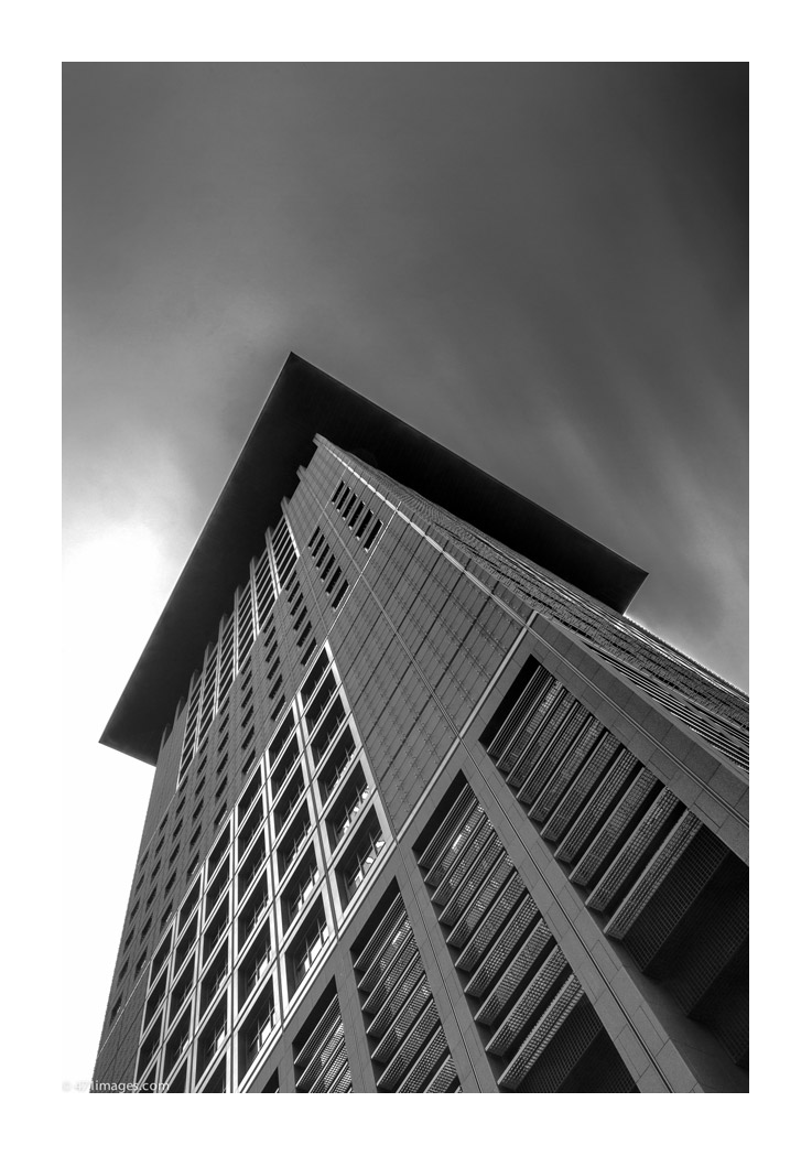 THE TOWERS - Japan Center