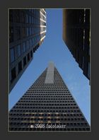 The Transamerica Pyramid in San Francisco (The Jet)