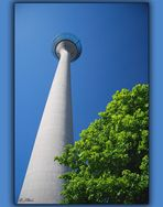 the TV tower in Duesseldorf