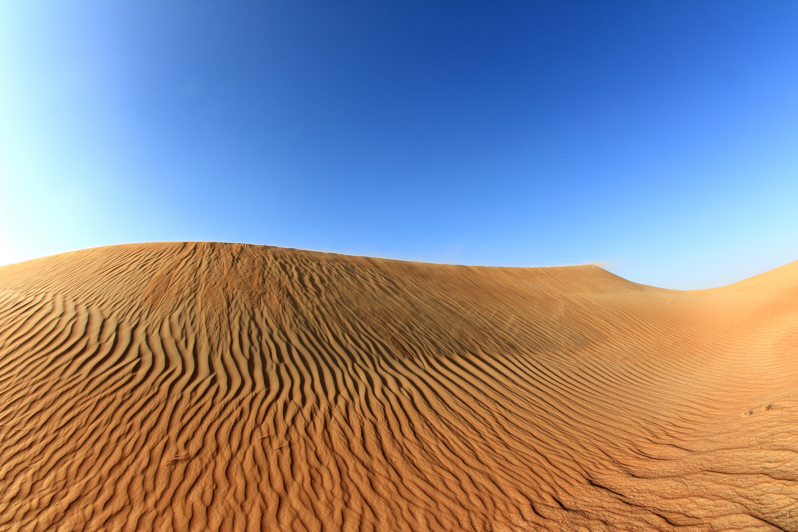 The UAE Desert