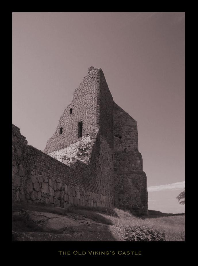 The Viking's Castle