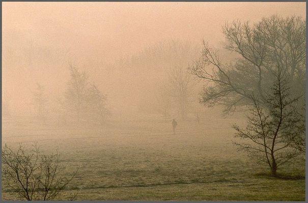 The Wanderer oder Misty Canterbury