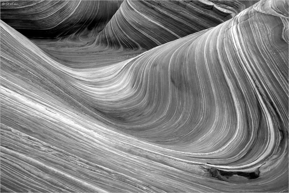 """The Wave"" Black & White"