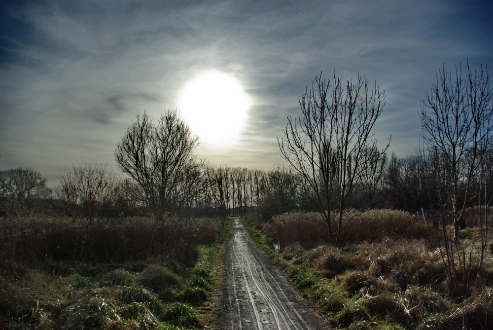 The way to the light...