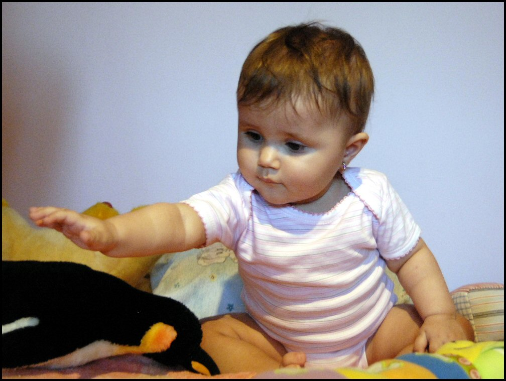 THE YOUNG LADY b