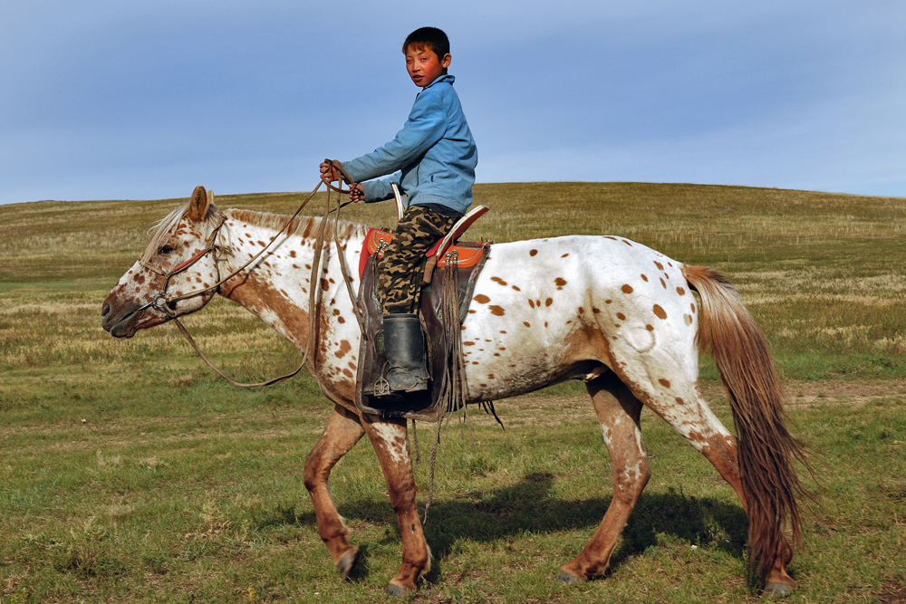 The young Mongolian boy on his horse