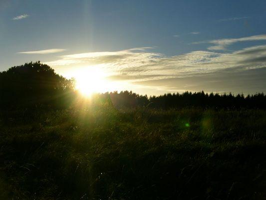 Thema: Sonne