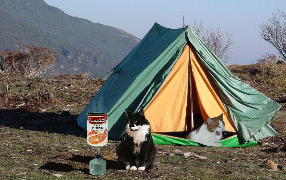 Theos und Yoshis Abenteuer ... in Bhutan