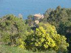 Théoule : la villa de Pierre Cardin entre les pins maritimes, les mimosas et la mer Méditerranée