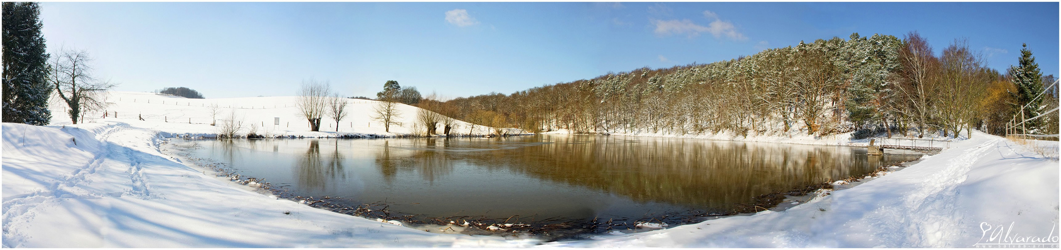 Thieleteich Winter