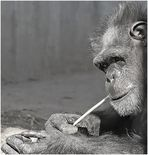 .....thinking.....