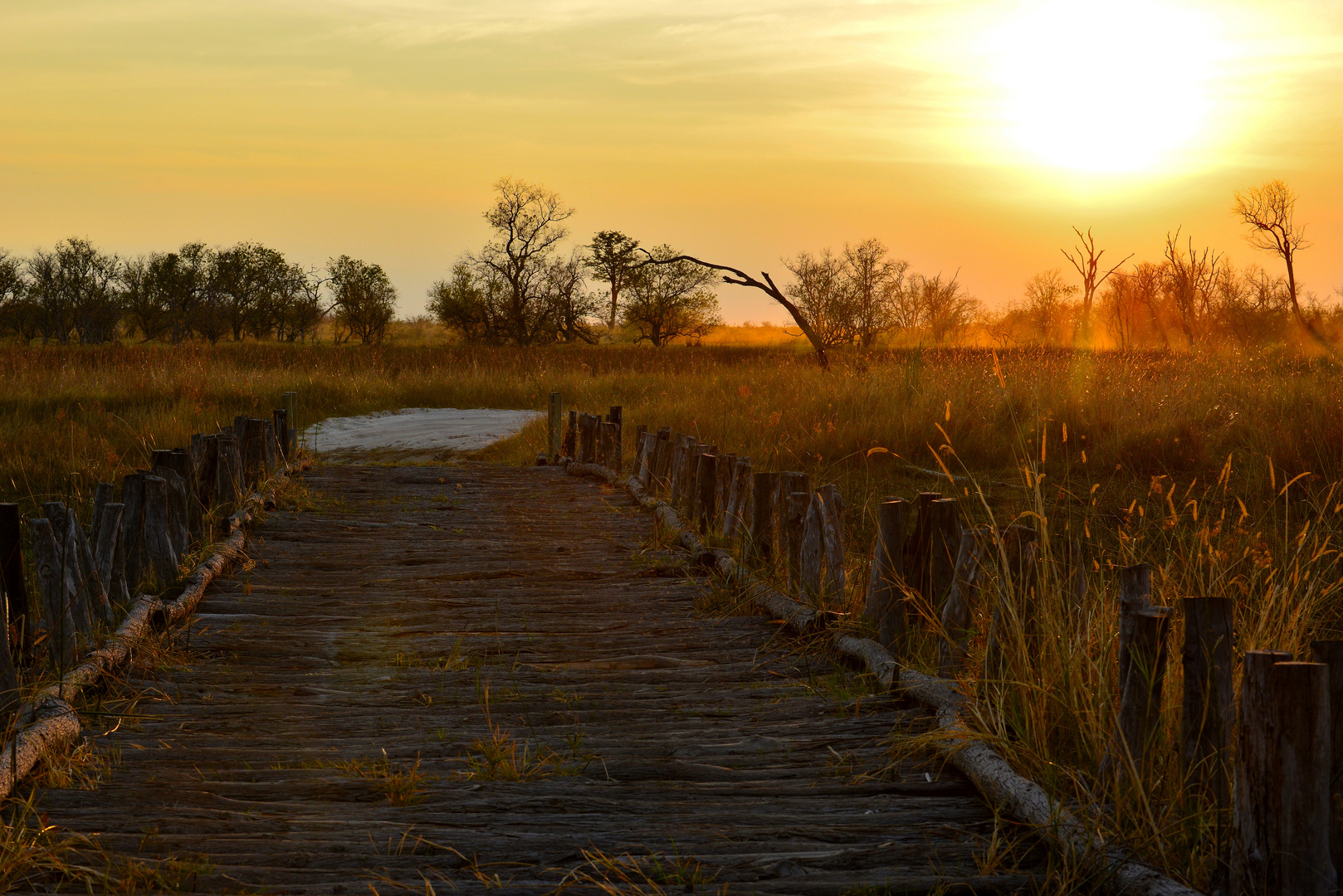 Third Bridge Moremi Nationalpark