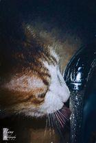 Thirstiness !!