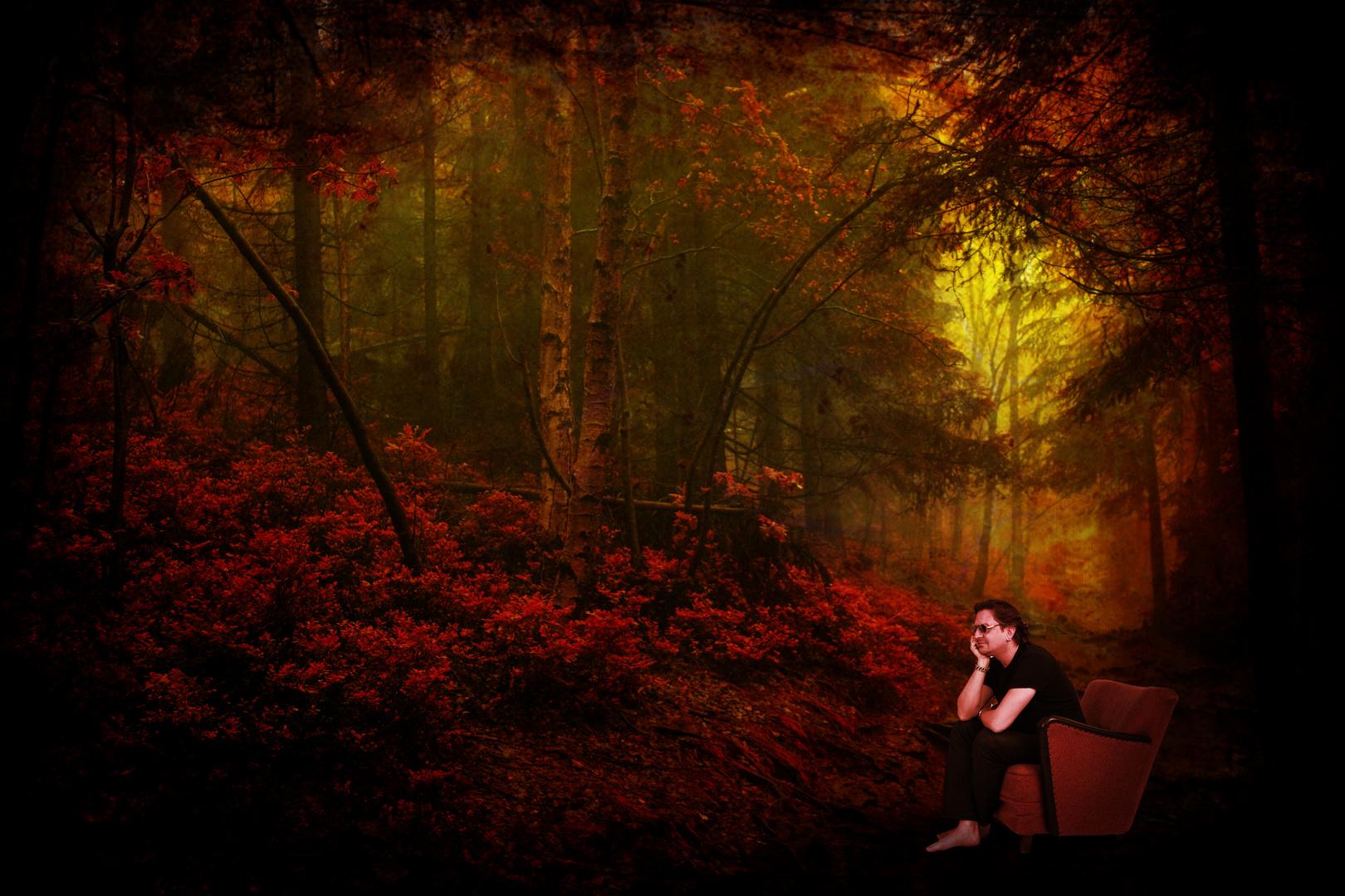 Thomas im Wald