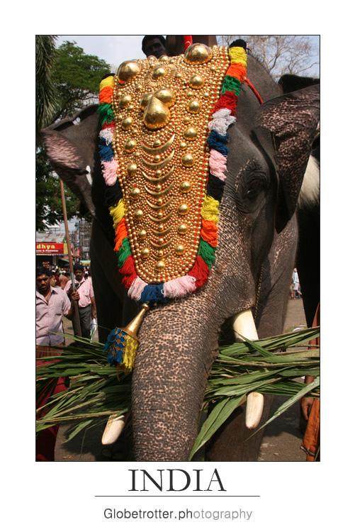 Thrissur Pooram [three]