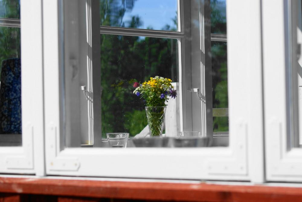 [...through Swedish windows...]