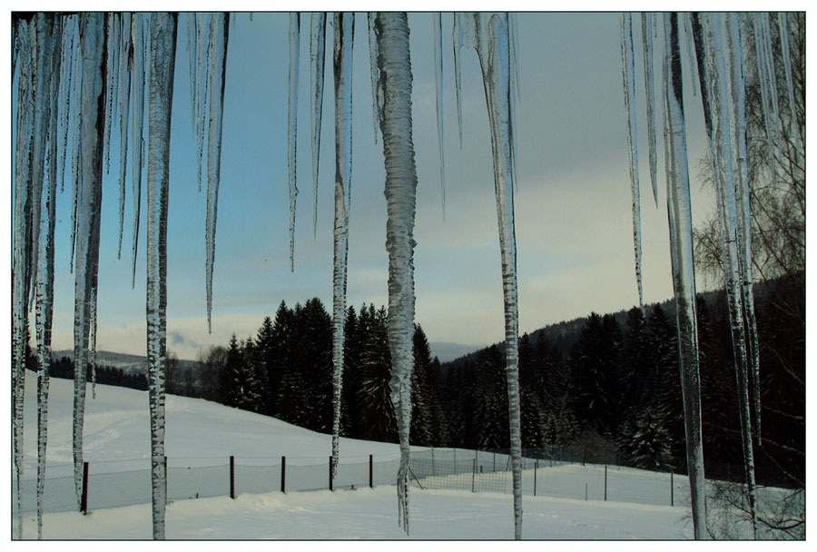 Through the icicle curtain