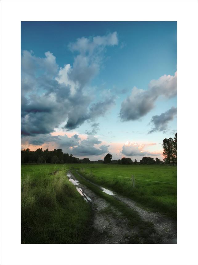 Through the meadow...