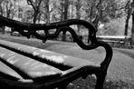 through the winter