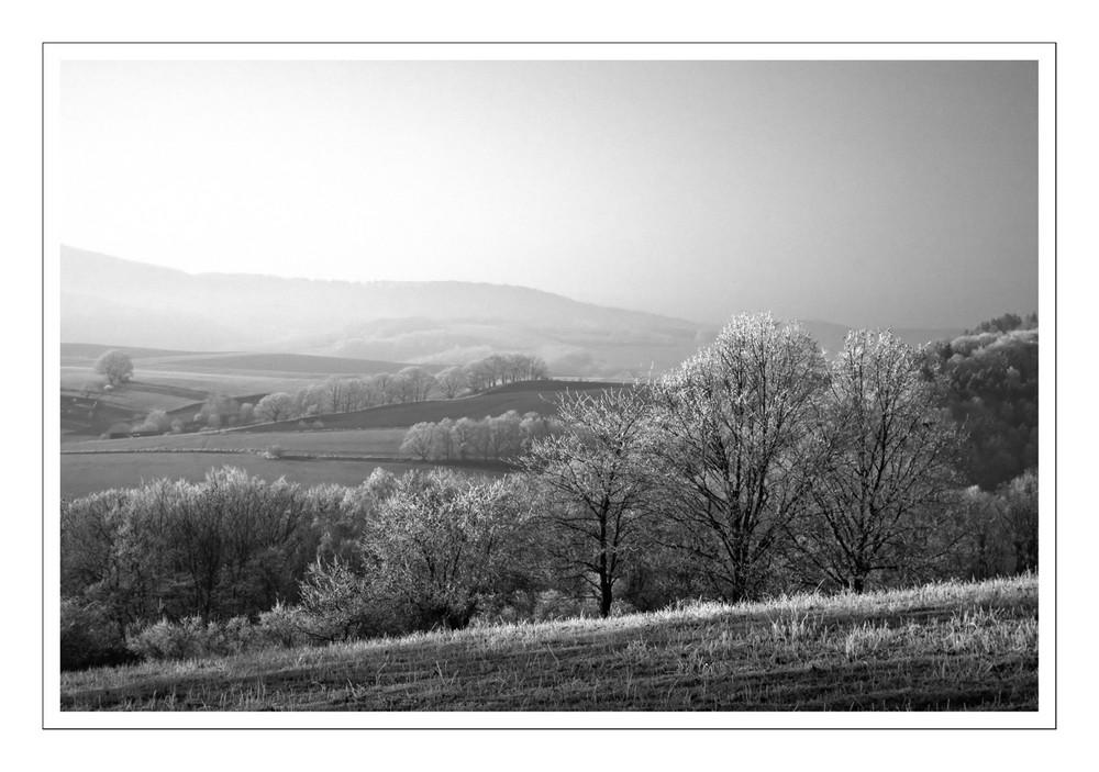 Thüringer Land II