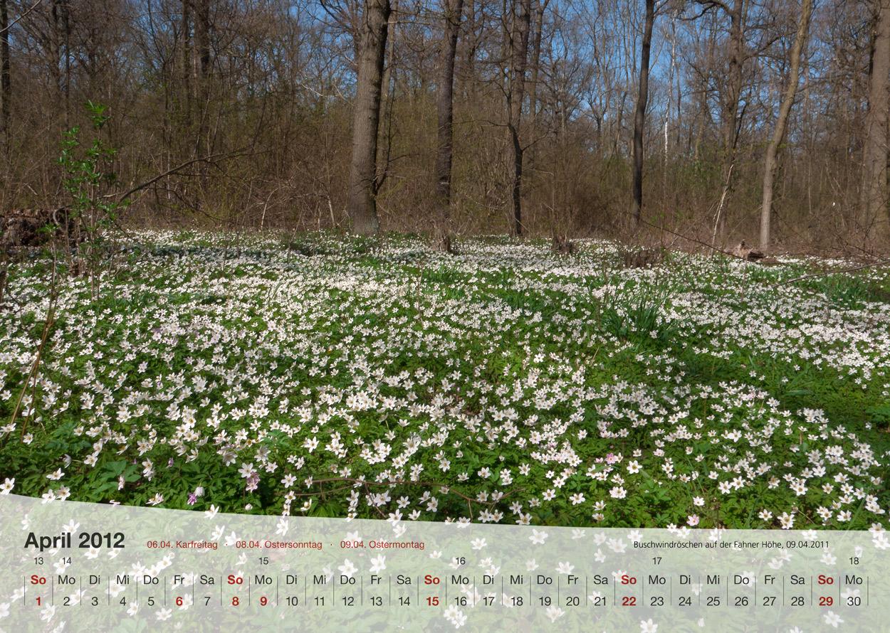 Thüringer Landschaften 2012 - April