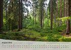 Thüringer Landschaften 2012 - August