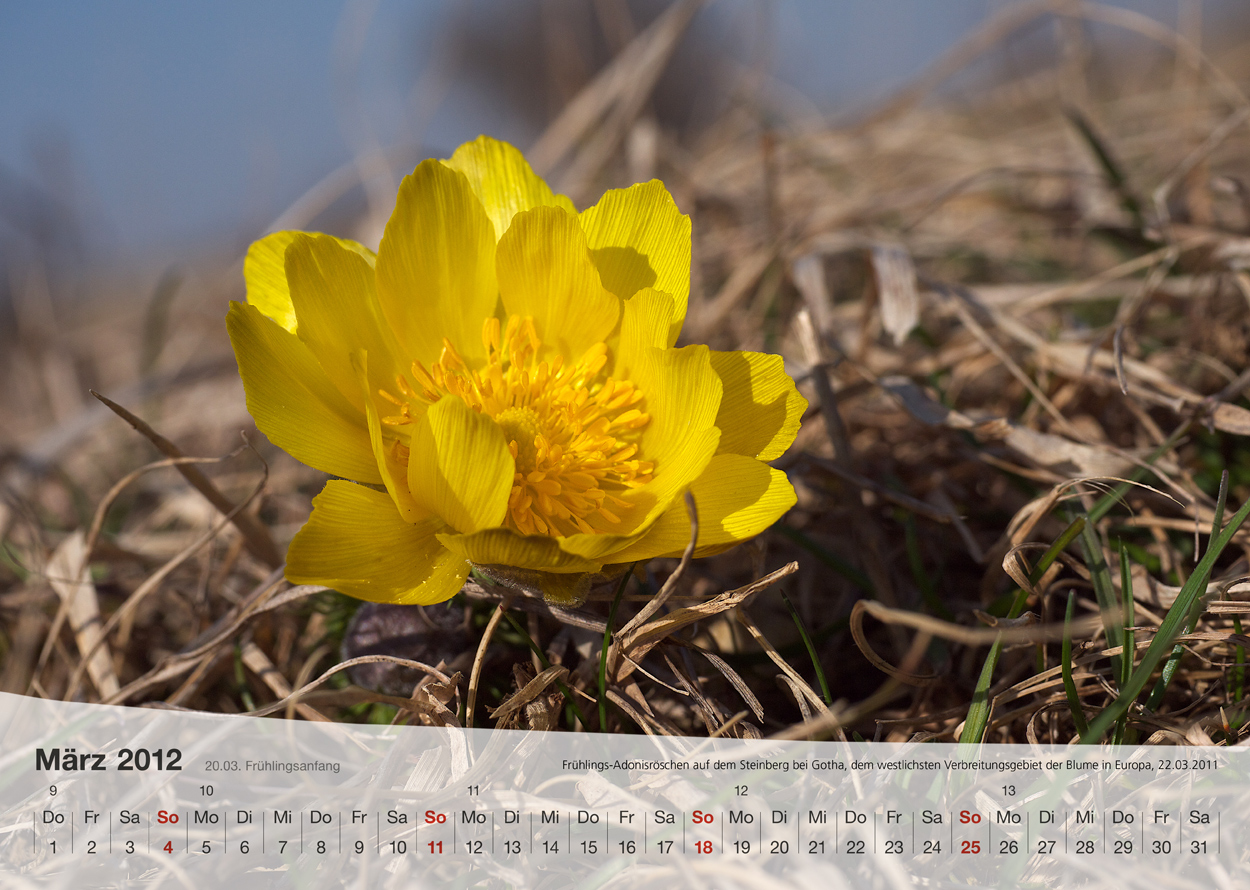 Thüringer Landschaften 2012 - März