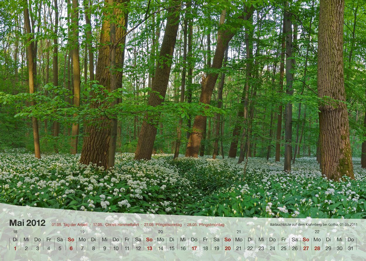 Thüringer Landschaften 2012 - Mai