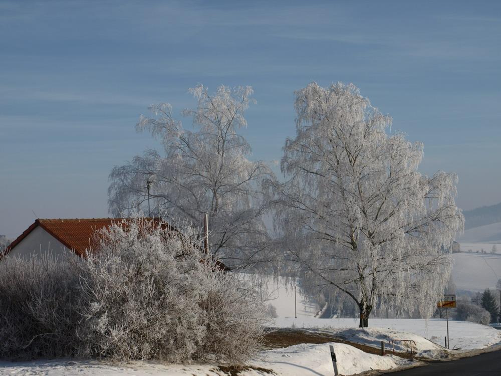 Thüringer Winter 4