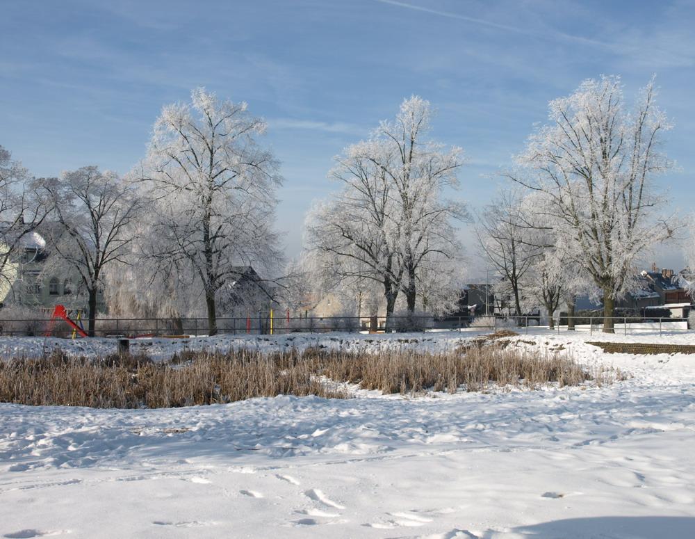 Thüringer Winter 5