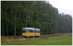 Thüringerwaldbahn [1] - Strömender Regen am Boxberg