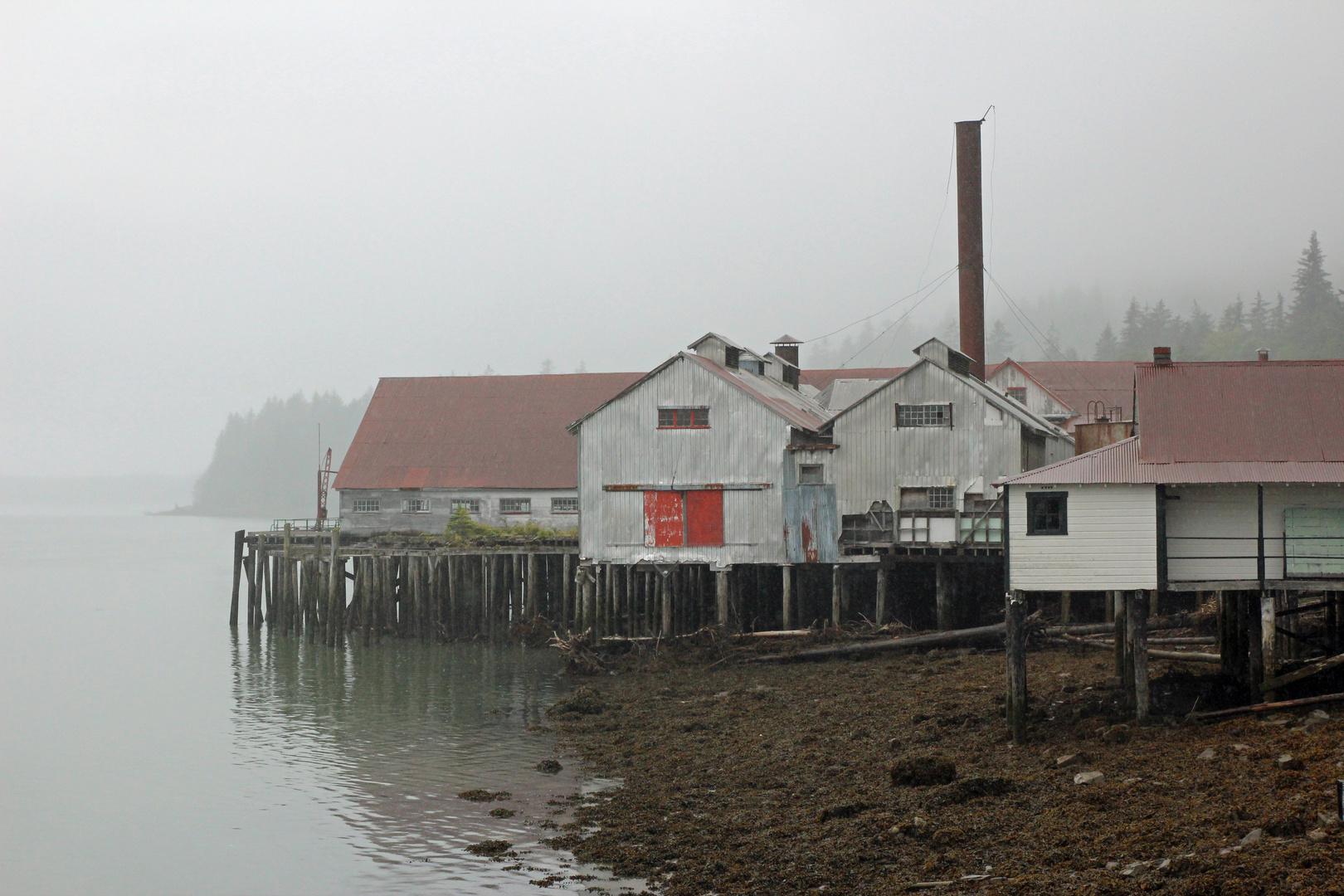 Thunfischfabrik 2
