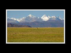 Tibet 2010 055