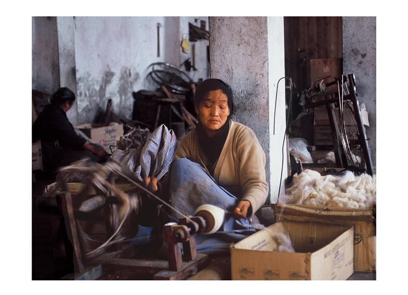 Tibetanisches Dornröschen