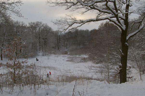 tief winterlicher Bürgerpark in Stendal
