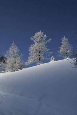 Tiefe Winterlandschaft