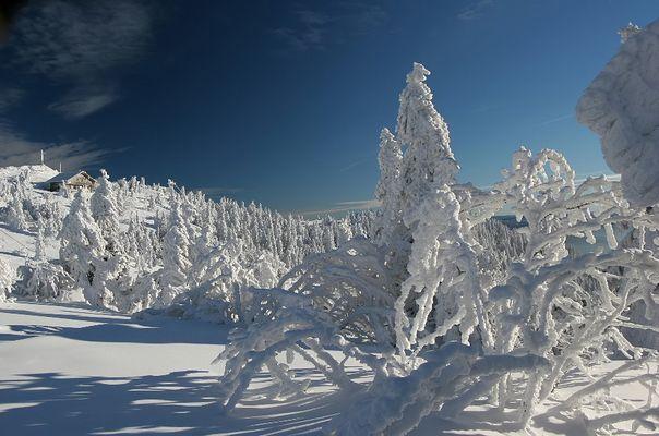 Tiefer Winter auf dem Arbergipfel
