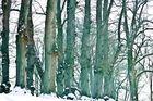 tiefster Winter :)