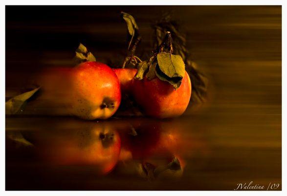 ..tiempo de otoño