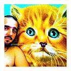 tien!! un chat jaune...!
